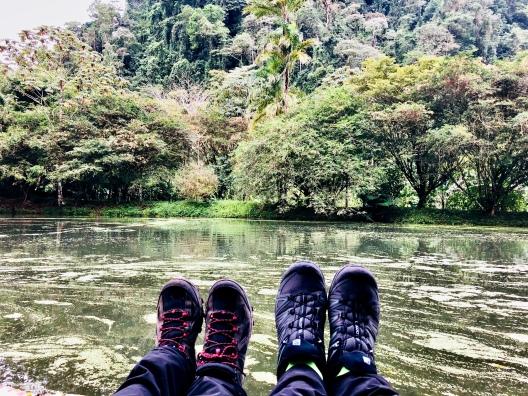 Bosque nuboso, COSTA RICA
